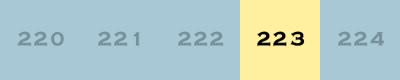 index223