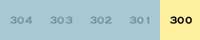 index300