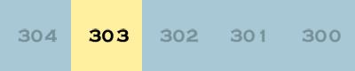 index303